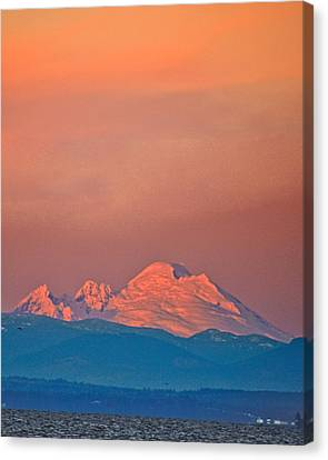 Mt Baker From Edmonds Harbor Canvas Print by Alvin Kroon