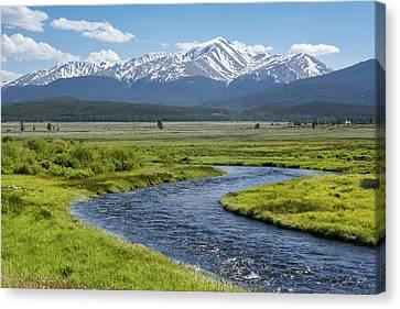 Mt. Elbert - Spring Canvas Print by Aaron Spong