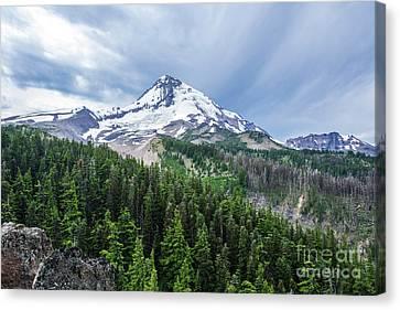 Mt Hood From Cloud Cap Canvas Print by Linda Steider