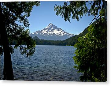 Mt Hood Over Lost Lake Canvas Print by Albert Seger