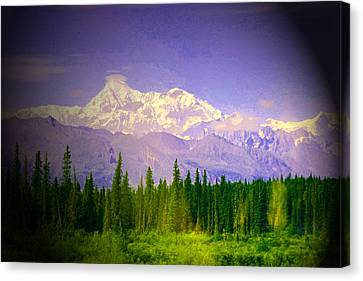 Canvas Print featuring the photograph Mt Mckinley Ambiance by Jack G  Brauer