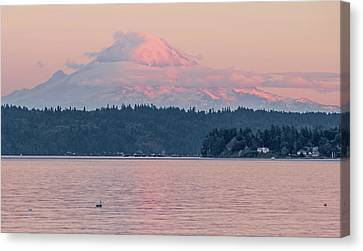 Mt. Rainier At Sunset Canvas Print