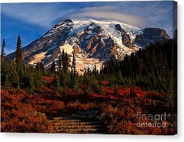 Mt. Rainier Paradise Morning Canvas Print