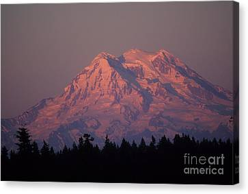 Mt. Rainier Washington Canvas Print by Robert  Torkomian