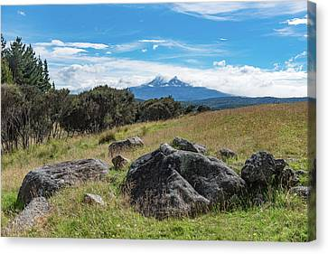 Canvas Print featuring the photograph Mt Ruapehu View by Gary Eason