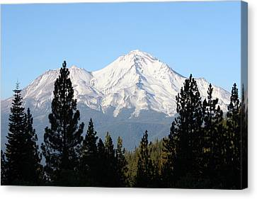 Mt. Shasta - Her Majesty Canvas Print by Holly Ethan
