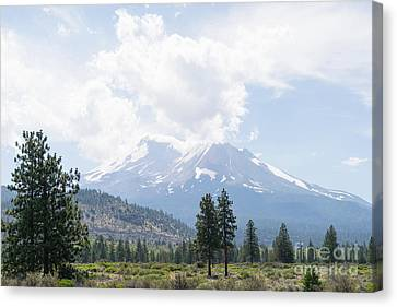 Canvas Print featuring the photograph Mt Shasta California Dsc5035 by Wingsdomain Art and Photography