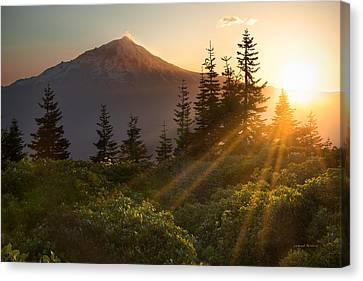Mt. Shasta Canvas Print by Leland D Howard