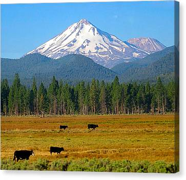 Mt. Shasta Morning Canvas Print by Betty Buller Whitehead