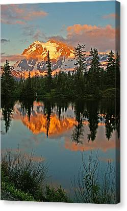 Mt Shuksan Canvas Print by Ulrich Burkhalter