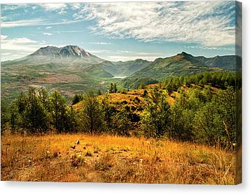 Mt St Helens I Canvas Print by Brian Harig