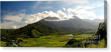 Mt. Waialeale Canvas Print