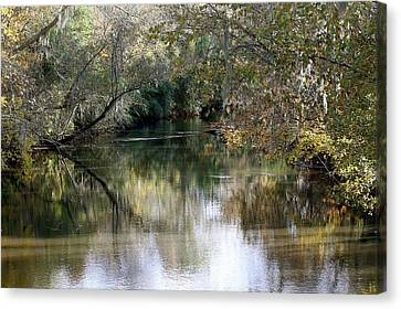Muckalee Creek Canvas Print