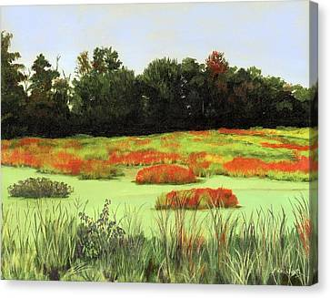 Mud Lake Marsh Canvas Print by Lynne Reichhart