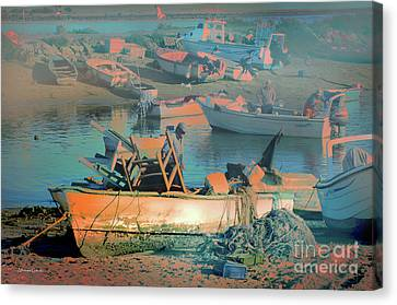 Canvas Print featuring the photograph Mudanza by Alfonso Garcia