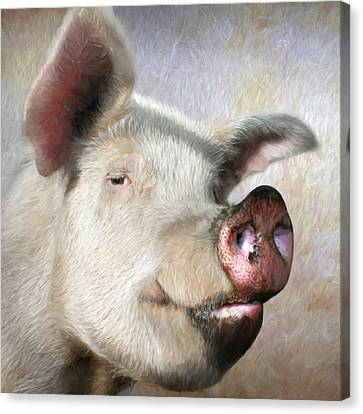 Counry Canvas Print - Muddy Pig Portrait by Lori Deiter
