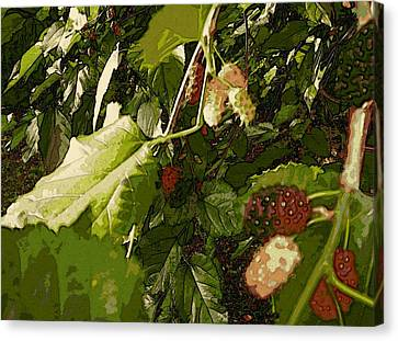 Canvas Print featuring the digital art Mulberry Moment by Winsome Gunning