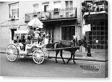 Mule And Buggy French Quarter New Orleans Canvas Print by Thomas R Fletcher