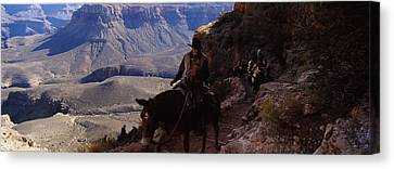 Mule Riders And Hikers On The Trail Canvas Print by Panoramic Images