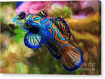 Clown Fish Canvas Print - Multicolored Clown Fish On Reef by Garland Johnson
