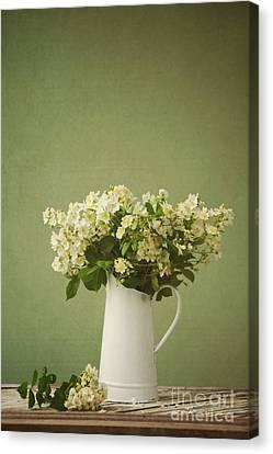 Multiflora Rose In A Rustic Vase Canvas Print