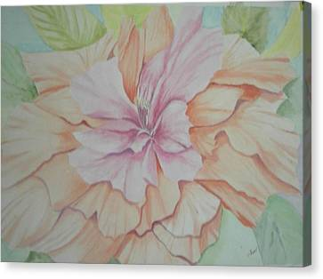 Multipetaled Pink Coral Hibiscus Canvas Print by Hilda and Jose Garrancho