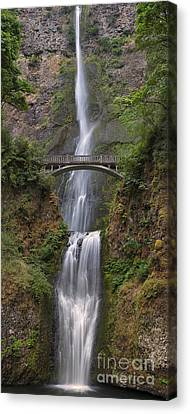 Multnomah Falls - Columbia River Gorge Canvas Print by Sandra Bronstein