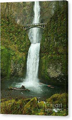 Multnomah Falls Canvas Print by Sheila Ping