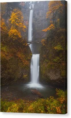 Multnomah Mist Canvas Print by Darren  White