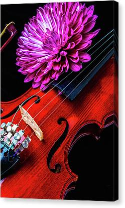 Mum And Violin Canvas Print by Garry Gay
