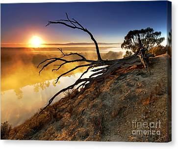 Murray River Sunrise Canvas Print by Bill  Robinson