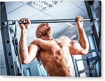 Muscular Strong Man Training At A Gym. Canvas Print by Michal Bednarek