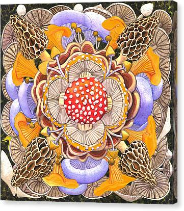 Morel Canvas Print - Mushroom Mandala by Catherine G McElroy