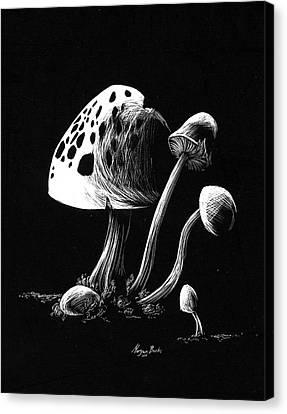 Mushroom Patch Canvas Print by Morgan Banks