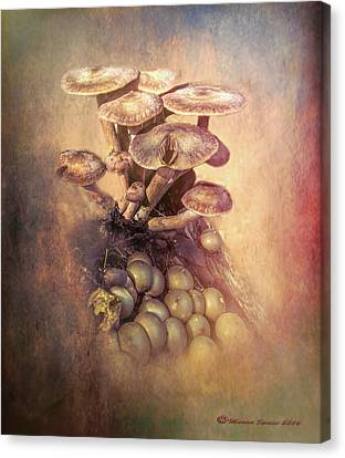 Mushrooms Gone Wild Canvas Print by Marvin Spates