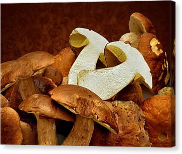 Mushrooms No. 2 Canvas Print by Joe Bonita