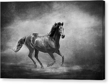 Music To My Ears Black And White Canvas Print