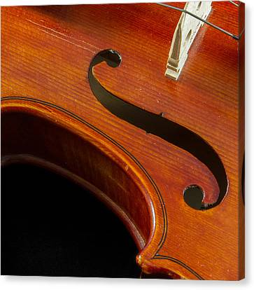 Musical Curves Canvas Print