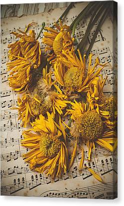 Musical Sunflowers Canvas Print by Garry Gay