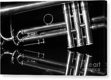 Musically Canvas Print by Dan Holm