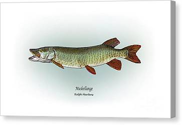 Muskellunge Canvas Print by Ralph Martens