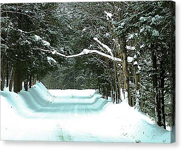 Canvas Print featuring the photograph Muskoka Wonderland by Al Fritz