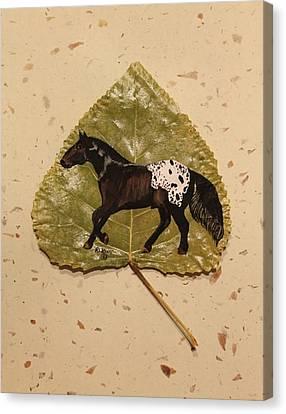 Mustang Appaloosa On Poplar Leaf Canvas Print