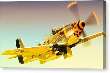 Mustang Checkmate Canvas Print