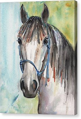 Mustang Makeover Canvas Print by Maria's Watercolor