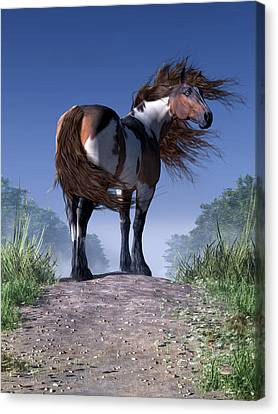 Mustang Trail Canvas Print