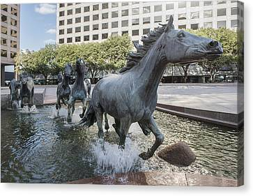 Mustangs Of Las Colinas Sculpture In Irving Texas Canvas Print