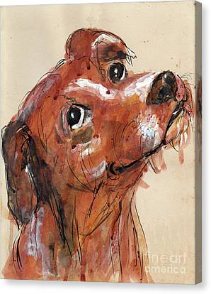 Mutt Canvas Print by Doris Blessington