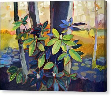 My Back Yard Canvas Print by Farhan Abouassali