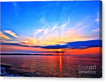My Blue Heaven Canvas Print by Stephen Melia